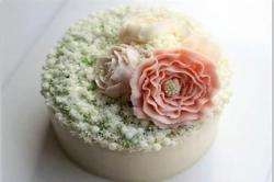 韩式裱花学习